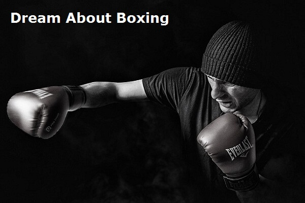 Boxing Dream Meaning: The Meaning and Symbolism of the Word Boxing
