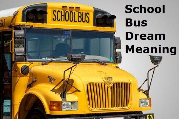School Bus Dream Interpretation: What Does a School Bus Symbolize in Dreams?