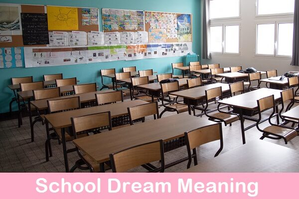 School Dream Meaning: What do School Dreams Mean? What Does School Symbolize?