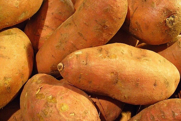 Dream Meaning of Eating Sweet Potatoes and What Does a Sweet Potato Symbolize?