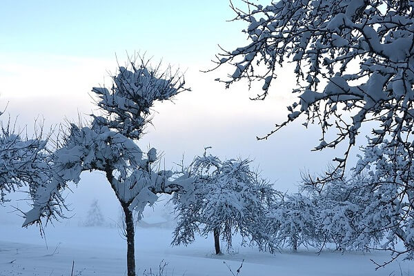 Dream Meaning of Snow in Summer: What does it mean to dream of snow in summer?